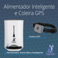 Kit Alimentador Inteligente e Coleira GPS